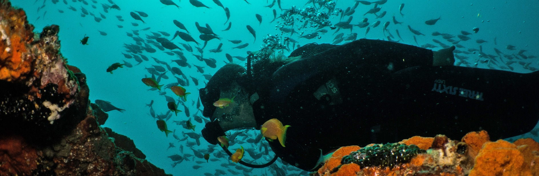 gozo-azul-mozambique-ponta-do-ouro-experience-the-thrill-of-the-ocean